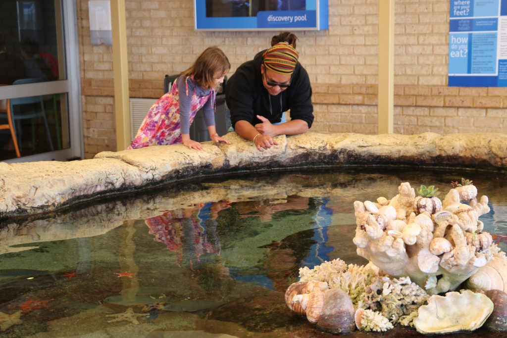 Aquarium of WA with Kids