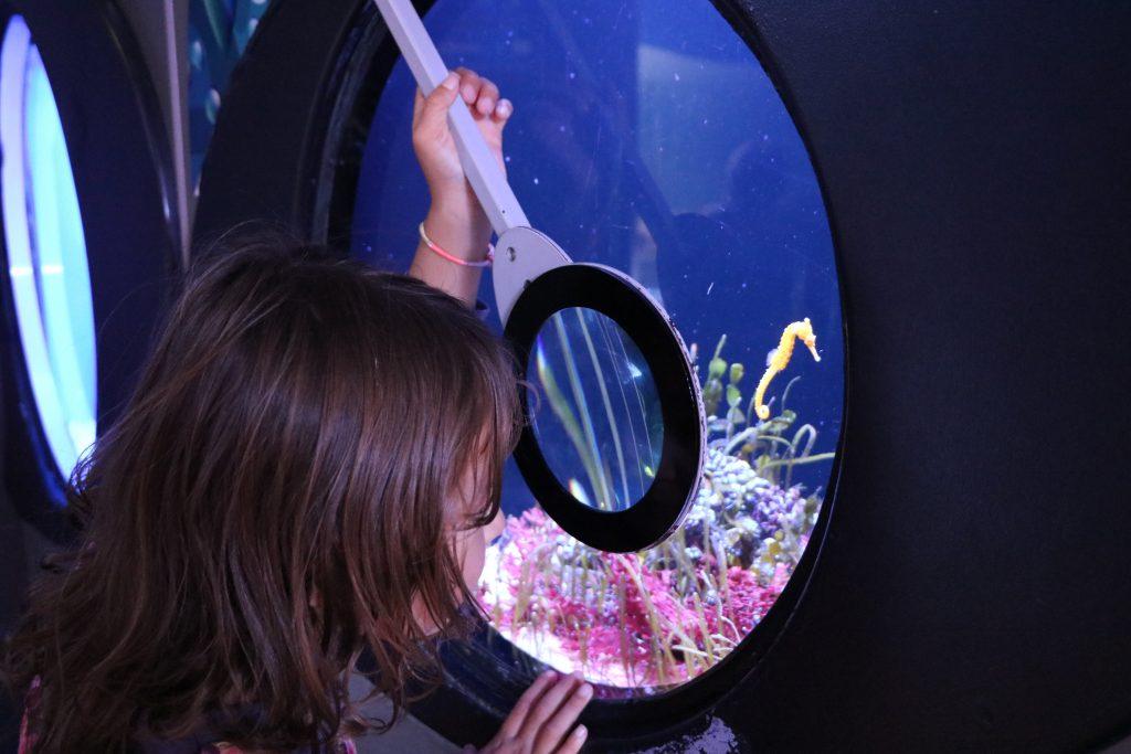perth underwater world