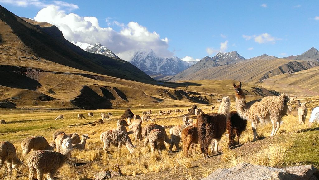 Andean Lodges - Peruvian Lodge Review