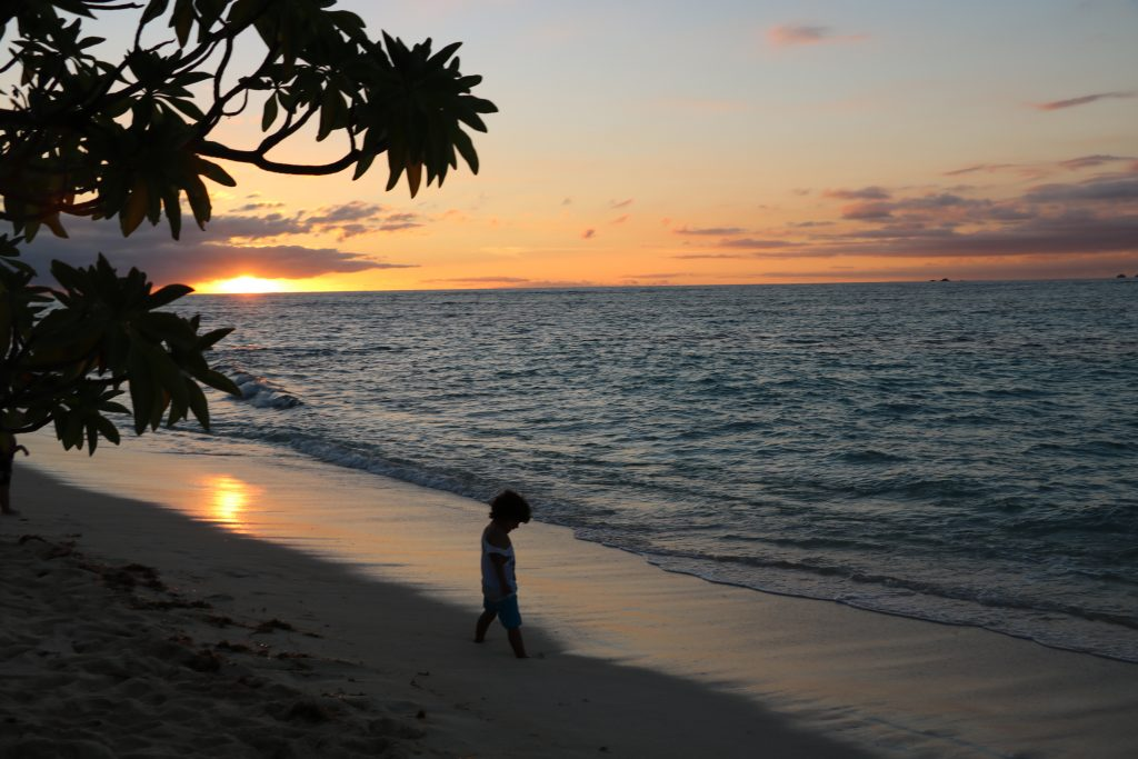 fiji best family resorts