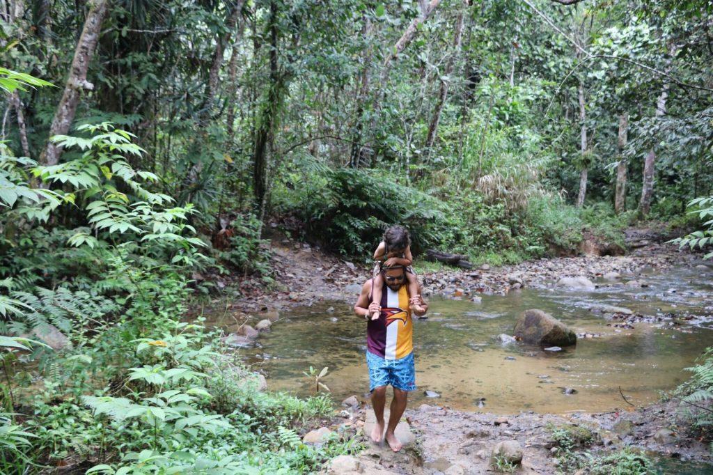 Fiji For Kids, rainforest
