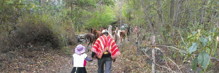 best peru family travel itinerary