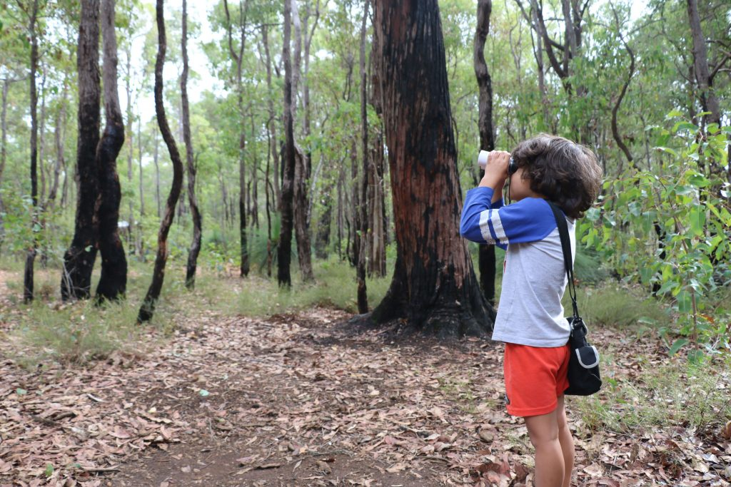Things To Do At Potters Gorge