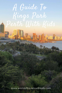 A Guide To Kings Park Perth With Kids