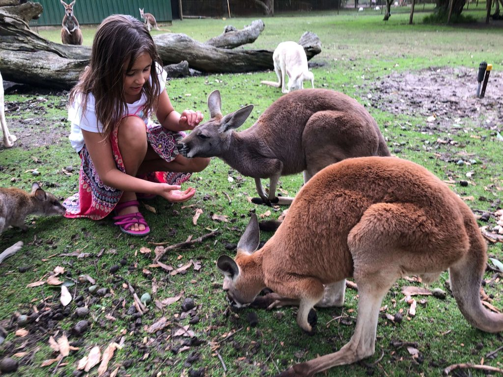 what to do with kids Perth