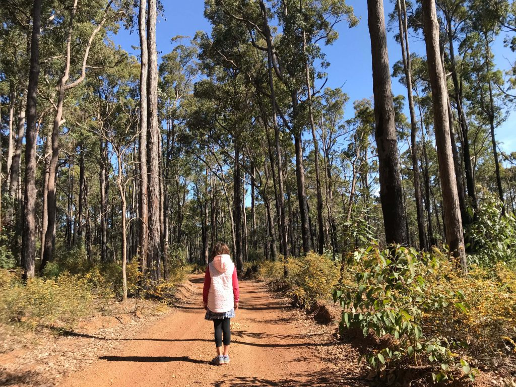 Top things To Do In Dwellingup With Kids