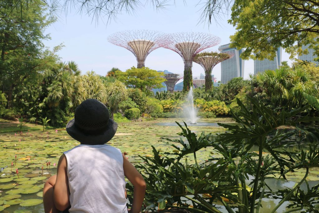 Gardens by the bay for kids