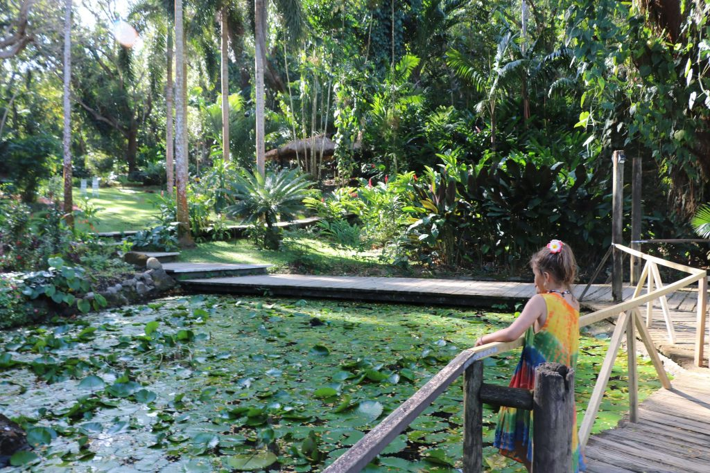 Things to do in Fiji - Nadi, sleeping giant garden
