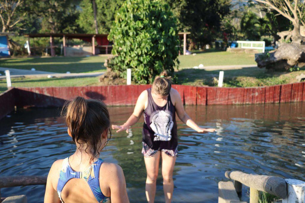 Things to do in Fiji - Nadi, Sabeto Hot springs