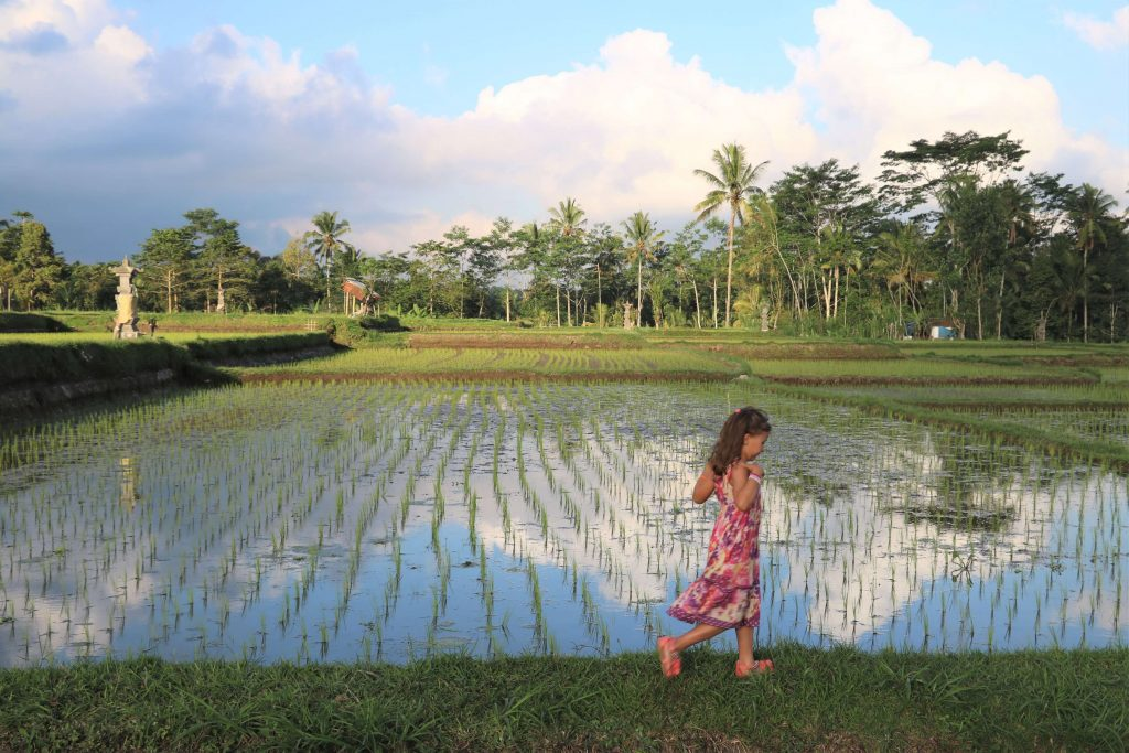 Girl walking through Rice paddies in Bali