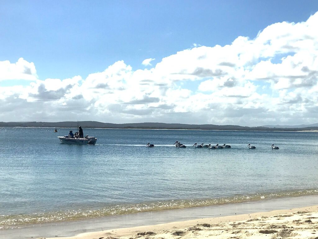 Best Weekend Getaways From Sydney Port Stevens