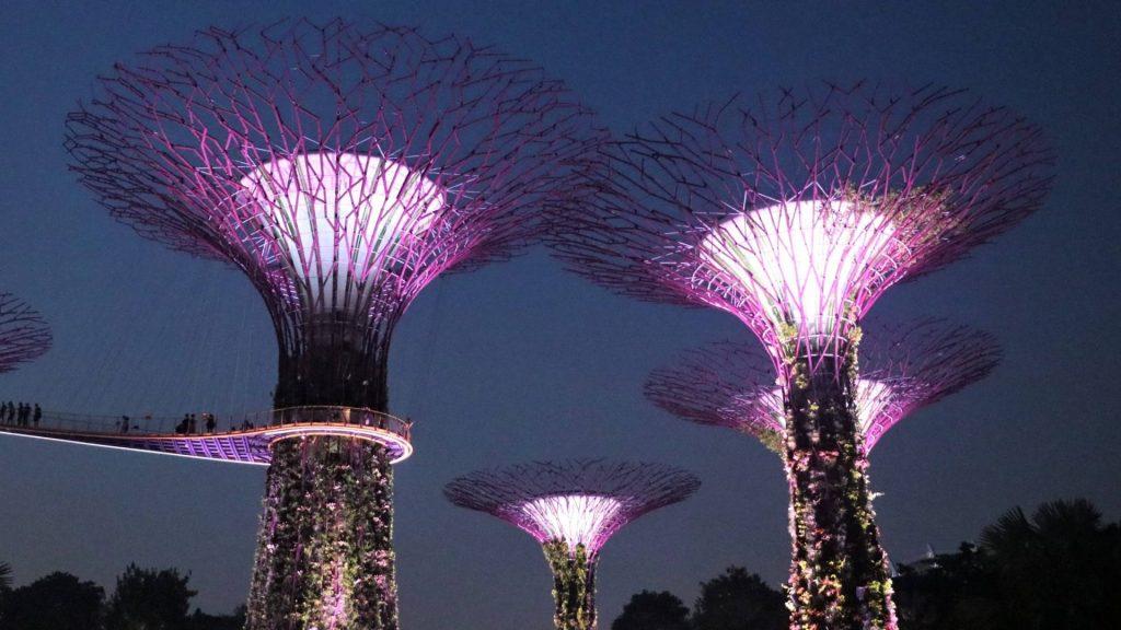 babymoon singapore