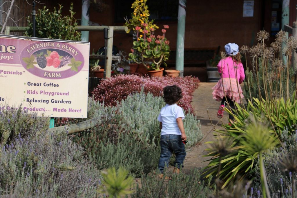 Things To Do In Pemberton For Kids