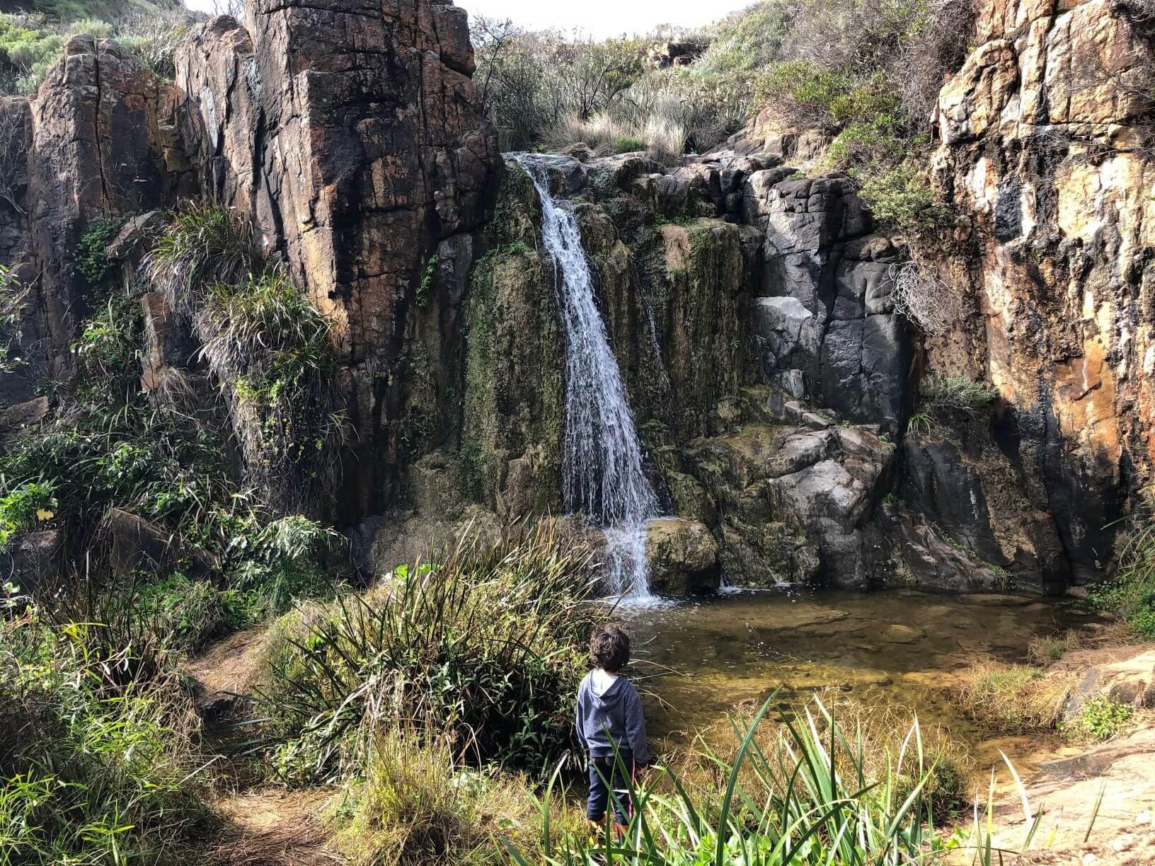 Take A Hike to Quinninup Falls