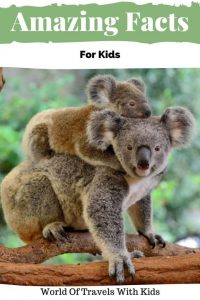 Amazing Facts For Kids