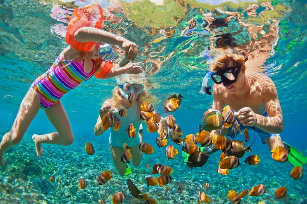 Amazing Great Barrier Reef Tours And Tips For Snorkeling In Cairns