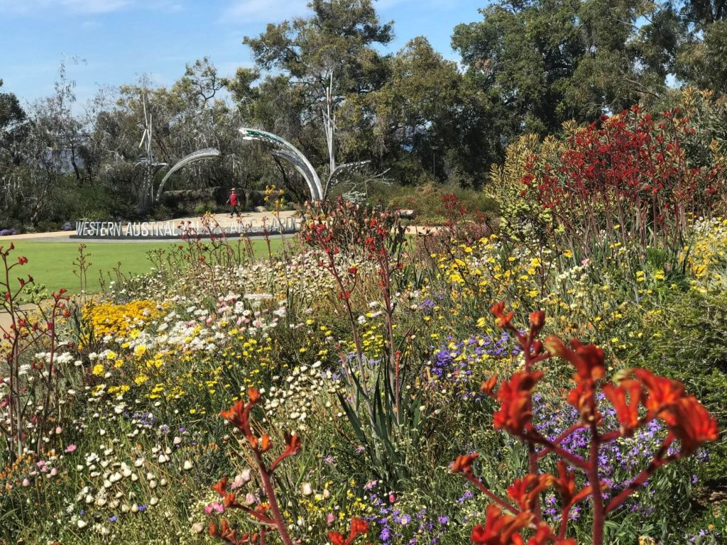 A Guide To Kings Park In Perth Western Australia