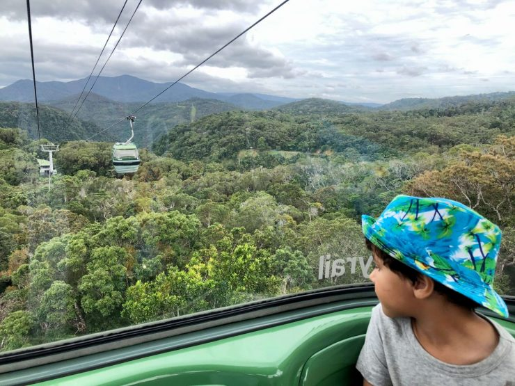 best day trips from cairns