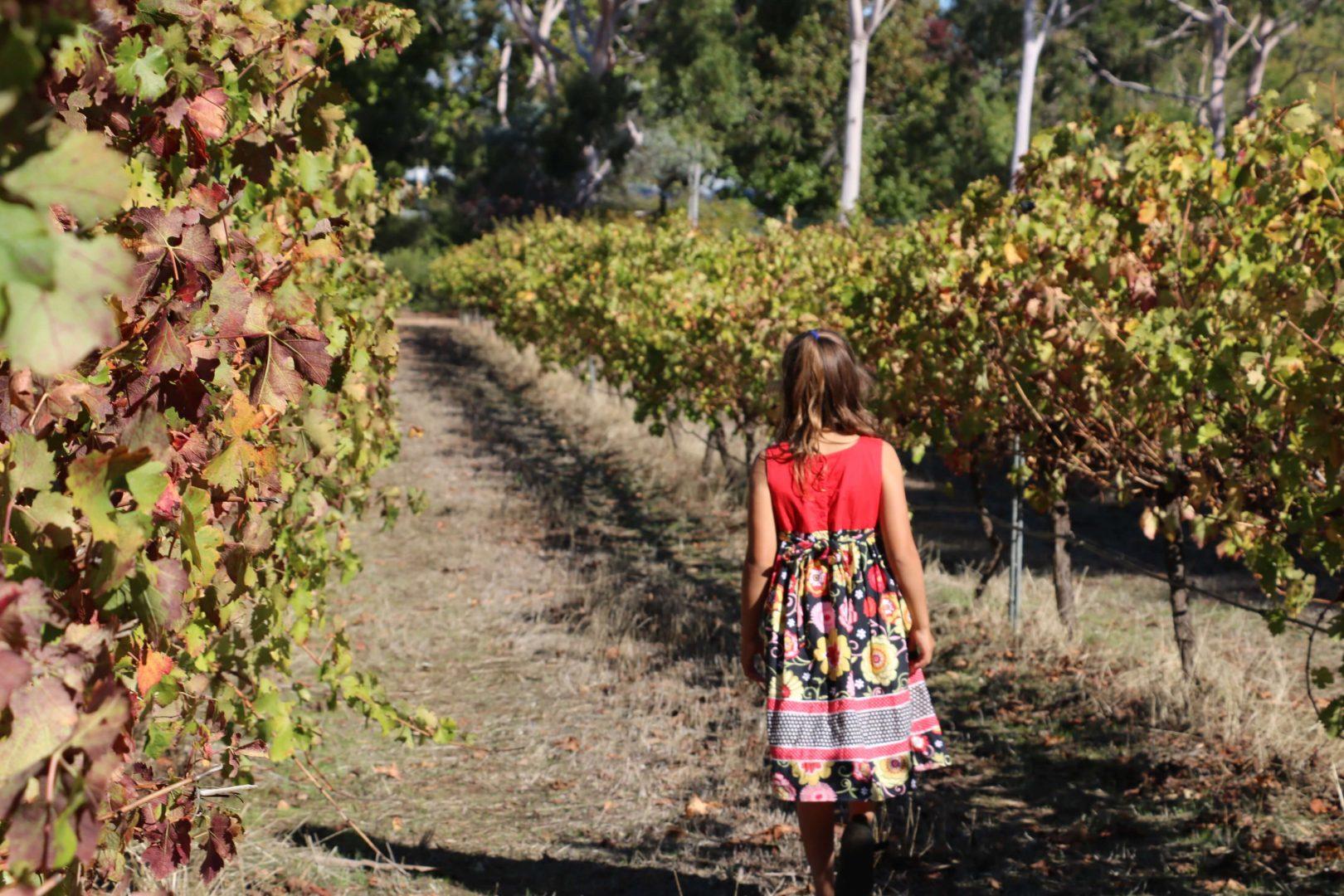 Ferguson Valley Wineries