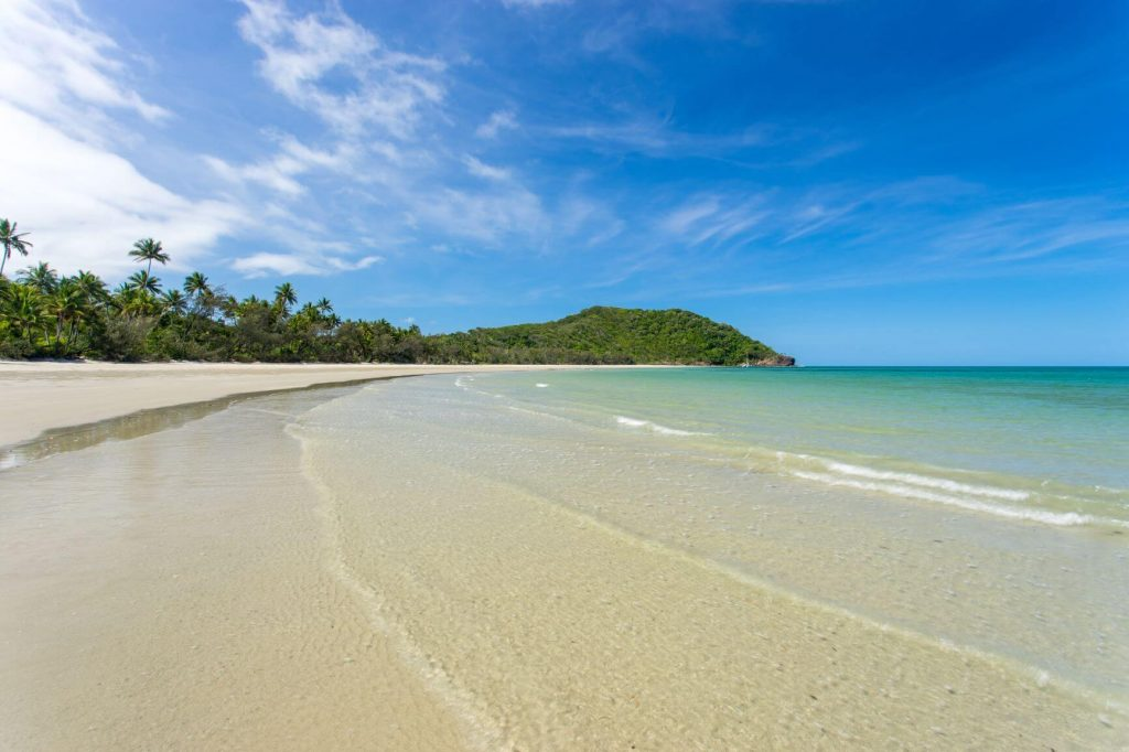 17 BEST Cairns Day Trips – Explore Tropical North Queensland