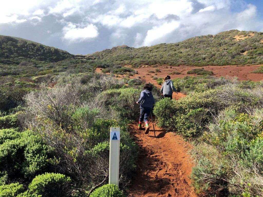 Quinninup Falls hike