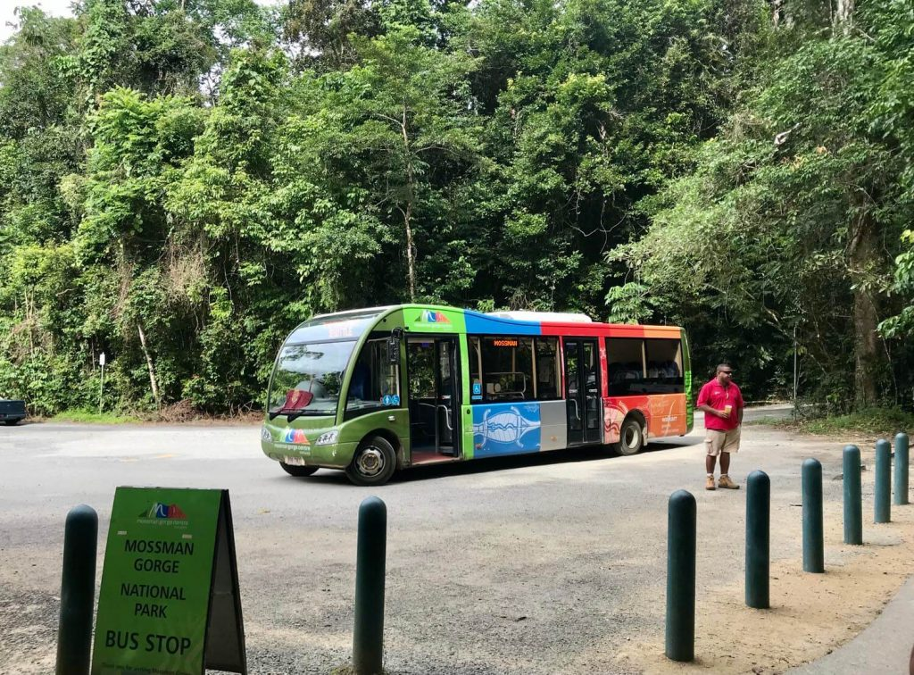 facts on the Daintree Rainforest