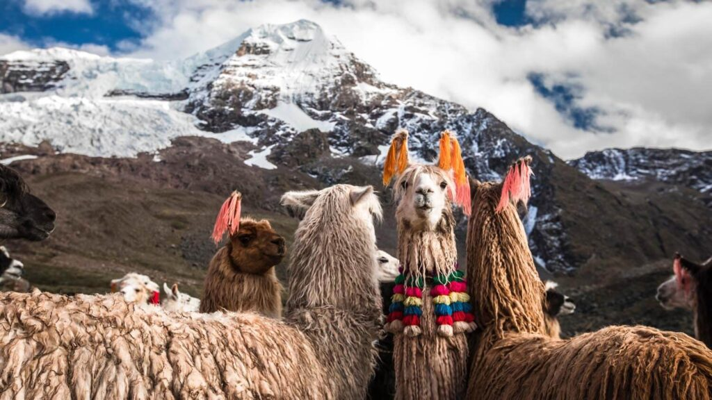 Interesting Facts About Peru: Geographical Peru Facts