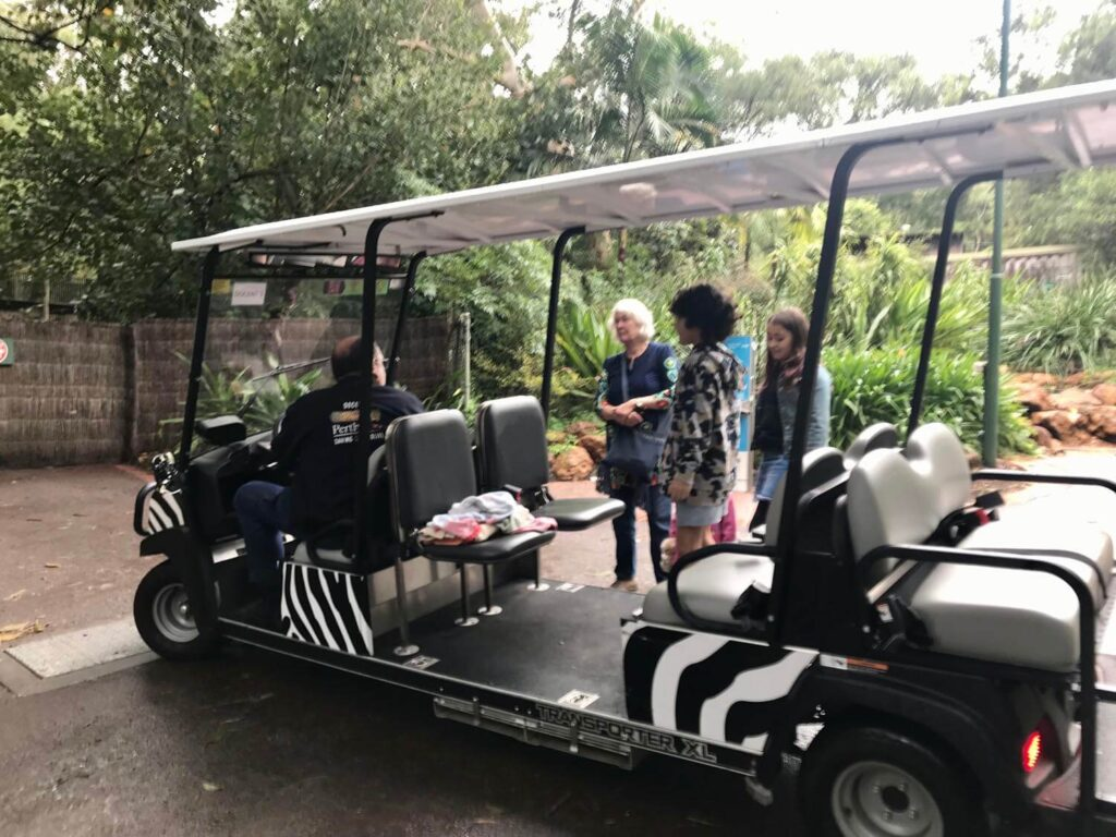 One of the Best Perth Family Activities - Our Perth Zoo Review