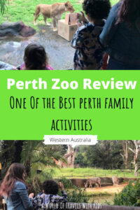 One of the Best Perth Family Activities – Our Perth Zoo Review