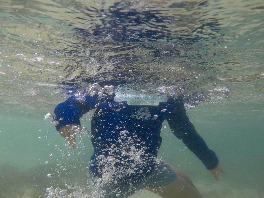 thermal swimwear australia