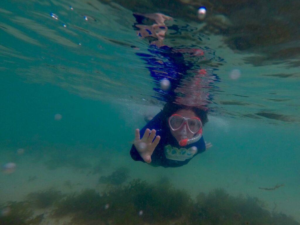 Best Thermal Rashie: Comparing Thermal Swim Top Options